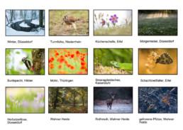 Fotokalender Naturfotografie Alexandra Wünsch Einblick Natur Deutschland Im wandel des Jahres Jahreszeiten Alexandra Wünsch