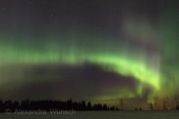 Alex Wünsch Naturfotografie Finnland Winter Schnee Polarlicht