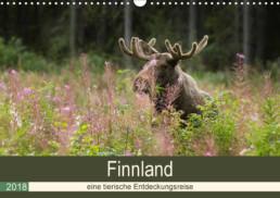 Fotokalender Finnland Naturfotografie Alexandra Wünsch Einblick Natur tierische Entdeckunsgreise Tiere Lappland
