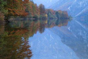 Alex Wünsch Naturfotografie Slowenien Herbst See
