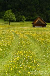 Alex Wünsch Naturfotografie Slowenien Triglav