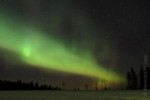 Alex Wünsch Naturfotografie Finnland Winter Schnee Polarlicht Nordkarelien
