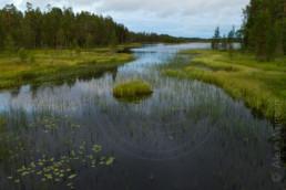 Alex Wünsch Naturfotografie Nordkarelien Finnland See
