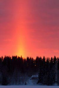 Alex Wünsch Naturfotografie Winter Finnland Schnee Nordkarelien