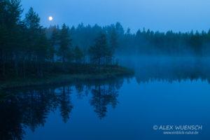 Alex Wünsch Naturfotografie See Vollmond Finnland