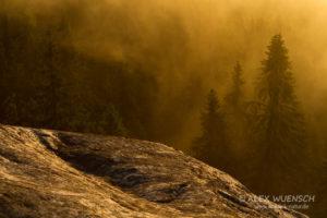 Alex Wünsch Naturfotografie Koli Finnland