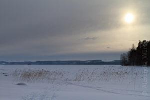 Alex Wünsch Naturfotografie Finnland Winter Schnee