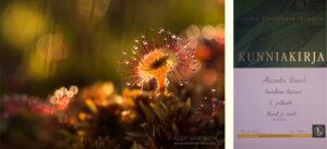 Alexandra Wünsch Alex Einblick Natur Wettbewerb GDT vuoden luontokuva varallinen kauneus