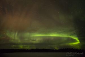 Alex Wünsch Alexandra Wünsch Einblick-Natur Fotografie Naturfotografie Winter Finnland Polarlichter Nordlicht aurora borealis Feuerfuchs