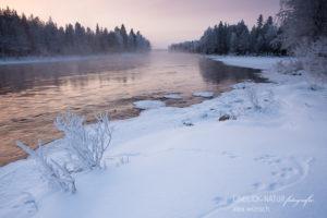 Alex Wünsch Alexandra Wünsch Einblick-Natur Fotografie Naturfotografie Tierspuren Fährte Fischotter Trittsiegel lutra Finnland