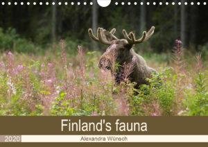 Alex Wünsch Alexandra Wünsch Einblick-Natur Fotografie Naturfotografie Kalender Naturfoto Finnland Tiere Finland calendar animals fauna
