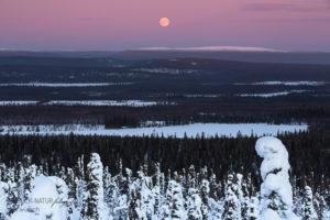 Alex Wünsch Alexandra Wünsch Einblick-Natur Fotografie Naturfotografie Winter Finnland Schnee Landschaft Vollmond